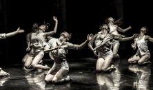 20ο Φεστιβάλ Σύγχρονου Χορού Κύπρου - Ισραήλ