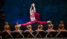 La Bayadere - Royal Ballet