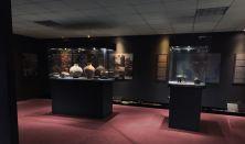 Obilazak arheološkog nalazišta Belo Brdo