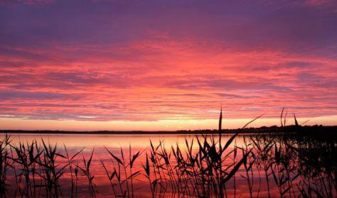 Arresø-Naturens forrådskammer