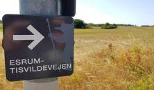 Løvspringsvandring på Esrum - Tisvildevejen