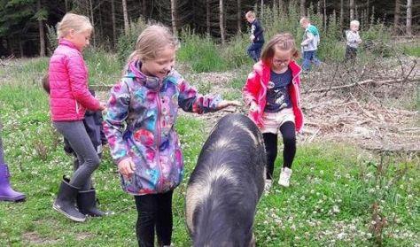 Den lille landmand - en oplevelse for børn