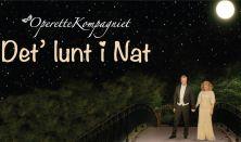 Nytårskoncert - Det' lunt i nat