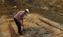Arkæologerne fortæller