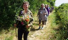 Den store Sommerpilgrimsvandring på Esrum-Tisvildevejen