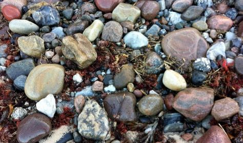 Røsnæs' geologi