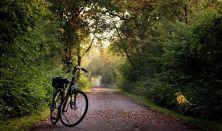 Guidet cykletur i Helsingørs grønne kulturlandskab