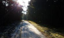 Mindful vintervandring